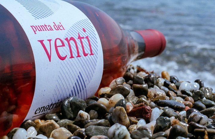 Mentre si vendemmia il Gaglioppo, la nostra mente segue la filiera fino alla bottiglia,…