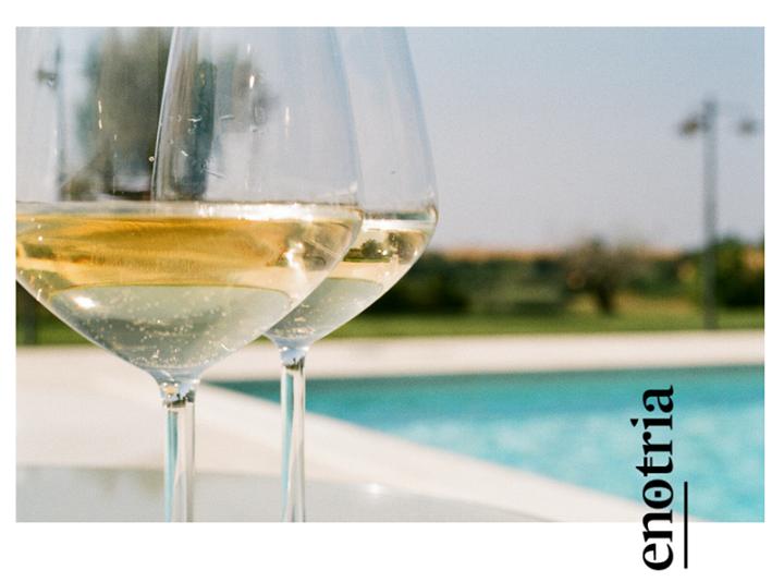 Quanto manca all'estate? #Cirò Bianco: fresco, giovane, immediato. Ogni giorno sulla tua tavola! #CantinaEnotria…