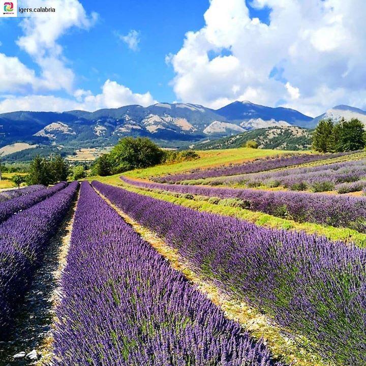 Ecco la prossima tappa per quando verrete a trovarci Nel cuore della #Calabria c'è…