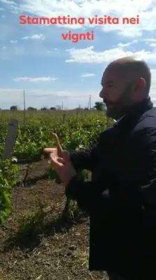 Il video degli amici di Vinarius – Associazione Enoteche Italiane. La visita ai vigneti,…